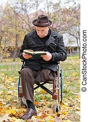 fogyatékos, öregedő bábu, alatt, egy, tolószék