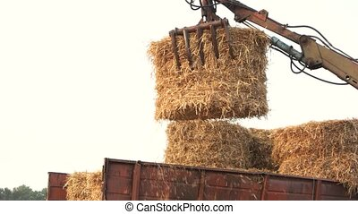 Folding hay stacks. Lift up and fold, concept of agriculture...