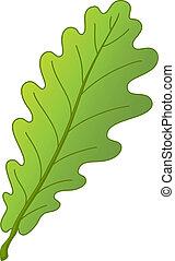 folha, árvore carvalho
