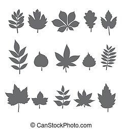 folha, árvore, folhas, cobrança, Outono, silhuetas