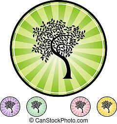 folha, árvore