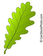 folha, carvalho, árvore