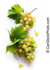 folha, doce, lista, uvas, experiência;, vinho branco