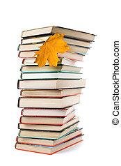 folha, grande, isolado, outono, livros, pilha