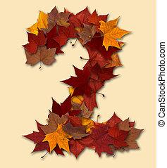 folha, isolado, multicolored, dois, outono, número, composição