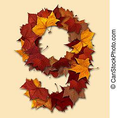 folha, isolado, multicolored, nove, outono, número, composição