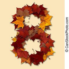 folha, isolado, multicolored, oito, outono, número, composição