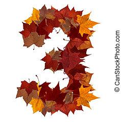 folha, isolado, multicolored, três, outono, número, composição