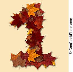 folha, isolado, um, outono, número, multicolored, composição