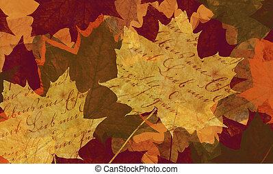 folha, maple, fundo