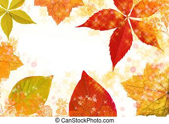 folha outono, borda