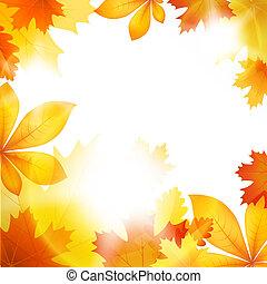 folha outono, outono
