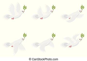 folha, ramo, voando, isolado, ilustração, experiência animação, segurando, azeitona, pombo branco, sprite