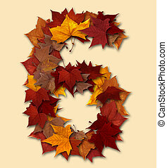 folha, seis, isolado, multicolored, outono, número, composição