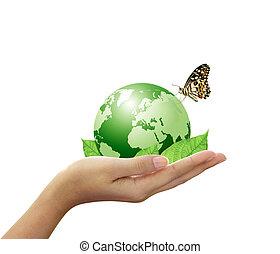 folha verde, mundo, mão