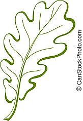 folha, vetorial, árvore carvalho