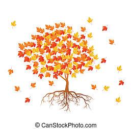 folhas, árvore, outono, vetorial, fundo, maple