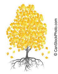 folhas, árvore, outono, vetorial, fundo, vidoeiro