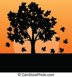 folhas, árvore, outono, vetorial, maple, fundo, paisagem