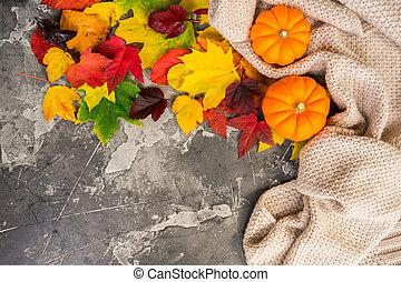 folhas, abóboras, ação graças, outono
