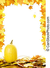 folhas, abóboras, outono