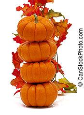 folhas, abóboras, Pilha, outono