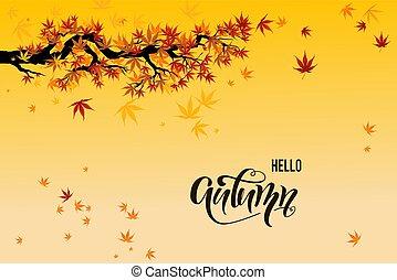 folhas, amarela, outono