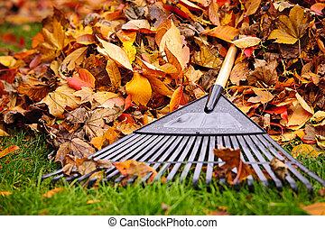 folhas, ancinho, outono