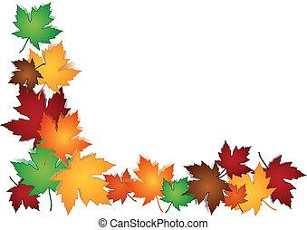 folhas, borda, maple, coloridos