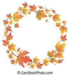 folhas, cópia, círculo, maple, espaço