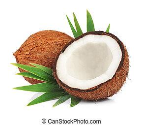 folhas, cocos