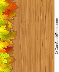 folhas, colorido, outono