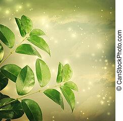 folhas, com, luzes verdes, fundo