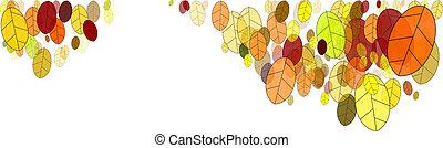 folhas, em, outono