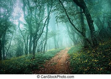 folhas, escuro, nevoeiro, através, floresta, misteriosa, verde, estrada