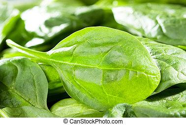 folhas, espinafre fresco