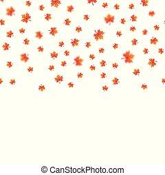 folhas, experiência., vector., branca, queda, maple