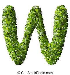 folhas, feito, verde, w, letra