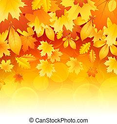 folhas, fundo