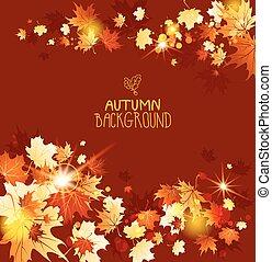 folhas, fundo, maple, outono