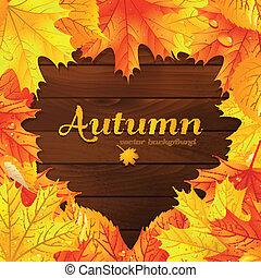 folhas, fundo, maple, vetorial, outono