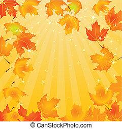 folhas, fundo, outono, queda