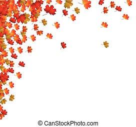 folhas, fundo, outono