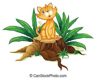 folhas, gato, toco, sentando