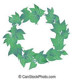 folhas, grinalda, verde, hera