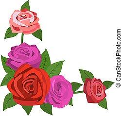 folhas, isolado, rosas, fundo, branco vermelho