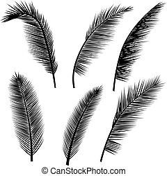 folhas, jogo, palma, silhuetas
