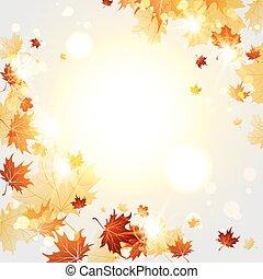 folhas, maple, fundo, outono, luminoso
