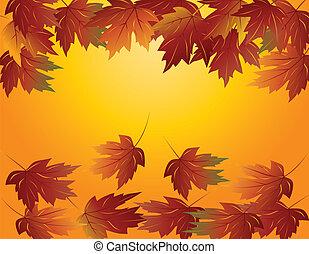 folhas, maple, ilustração, outono
