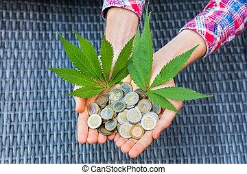 folhas, moedas, segurar passa, cânhamo, euro
